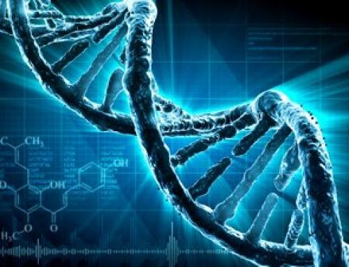 DNA scrigno di meraviglie